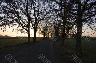 Sunset on field road