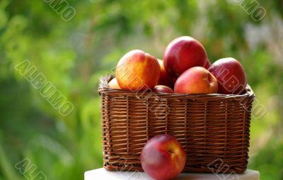 Small hamper of fruit
