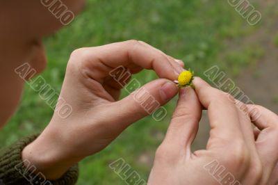 last petal