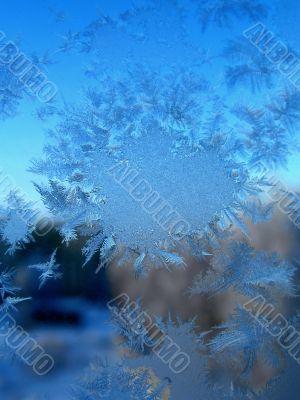 Winter natural snowflake
