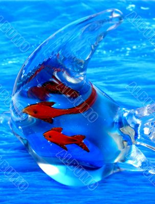 Aquatic life . Glass fish