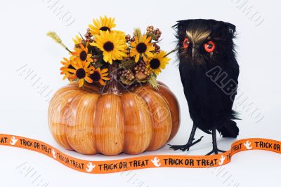 Pumpkin with Owl, Flowers, and Trick or Treat