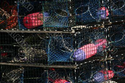 Lobster floats, blue,  neon