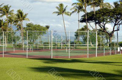 Tropical Tennis court