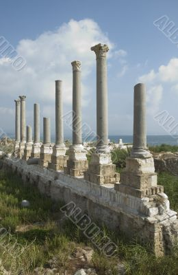 Ancient columns of Tyre, Lebanon