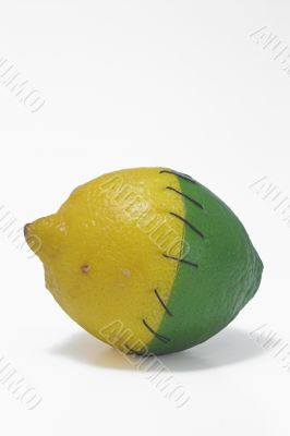 Stitched Lemon and Lime