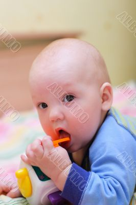 Baby put toy in mouth