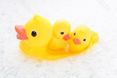 Three rubber ducks in foam water