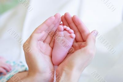 Father gently hold baby`s leg in your hands #2