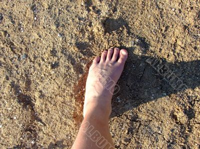 Leg of the person on the dry lifeless ground