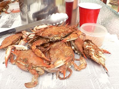 crab - cooked blue crabs 8