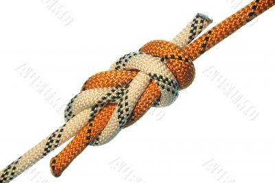 Figure eight knot