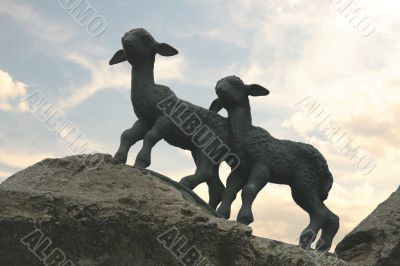 Two lambs on the rocks - evening