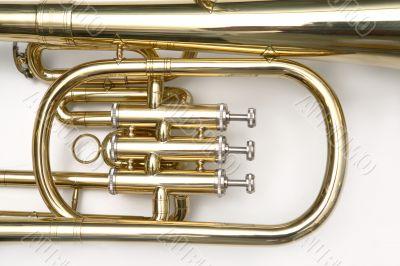 Trumpet cornet close-up