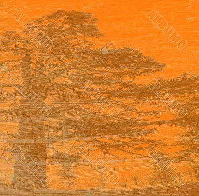 grunge background with tree silhouette