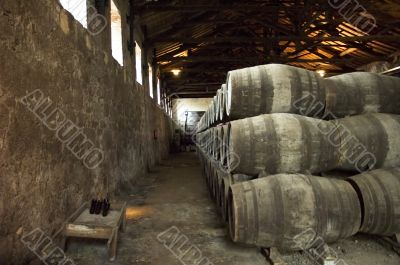 port barrels in vineyard