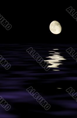 moon reflecting in the water