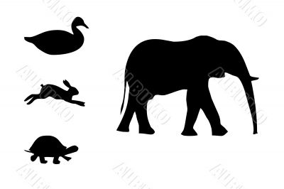Black animals silhouettes,vector,pictur e,elephant