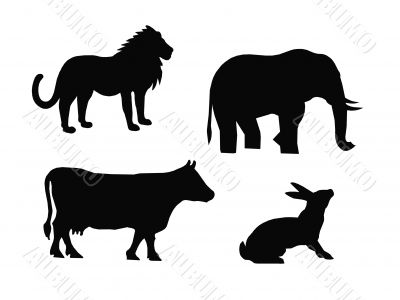 Black animals silhouettes,vector