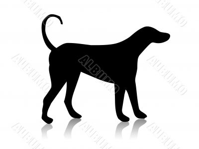 Black dog silhouette,shape,vector,p et