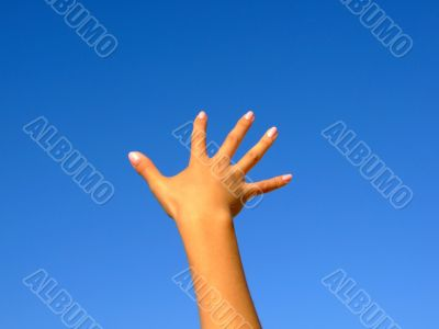 Female hand on a background of the blue sky
