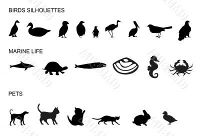Many animals silhouettes,shapes,image, nature