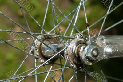 Bicycle wheel close up. Metal spokes.