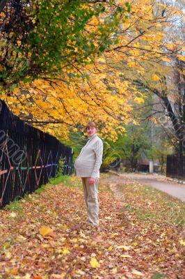 Pregnant woman walk in autumn park #1