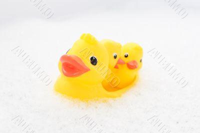 Three rubber ducks in foam water #3