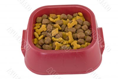 dogfood bowl on white