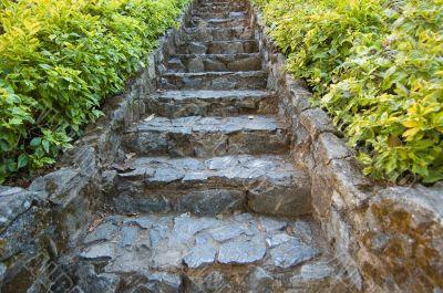 steps in eastern garden