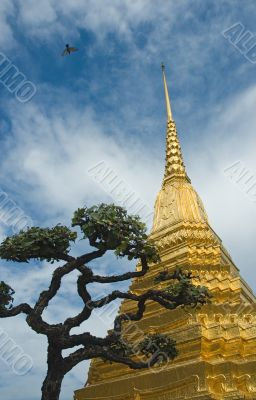 Golden stupa and a tree over blue sky background