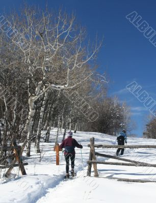 Snowshoe hiker with wooden rail fence