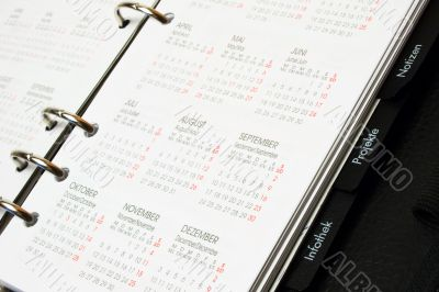 Organizer with calendar