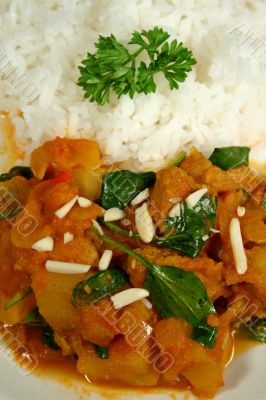 Lamb And Tomato Curry 2