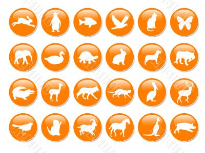 Orange icons with animals silhouettes