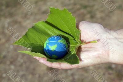 preserve the environment