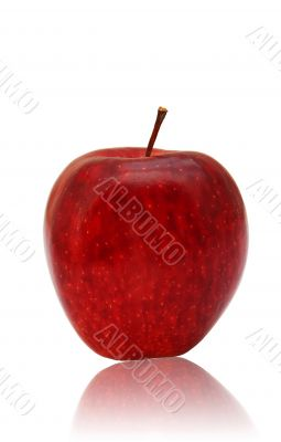 apple, calorie, fresh, garden, food