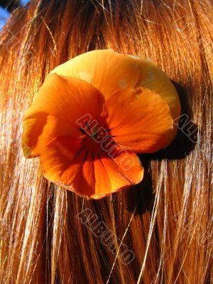 Girl`s hair and orange flower