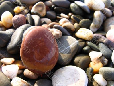 Wet sea stones