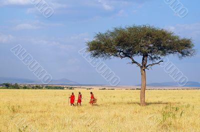 Maasai at walk.