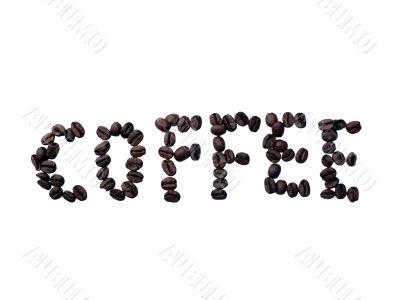 coffee bean text