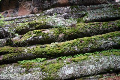 Rock layer.