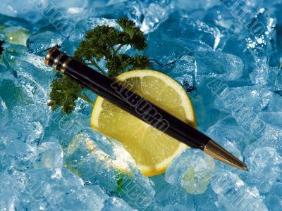 Executive Pen On Ice