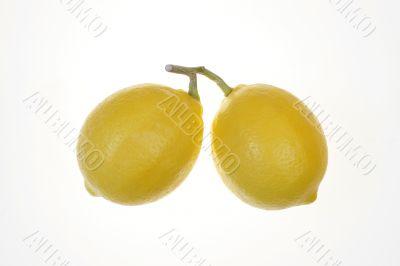 Two Whole Lemons on white