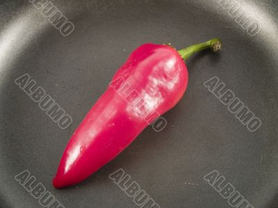 red hot chili pepper in a pan
