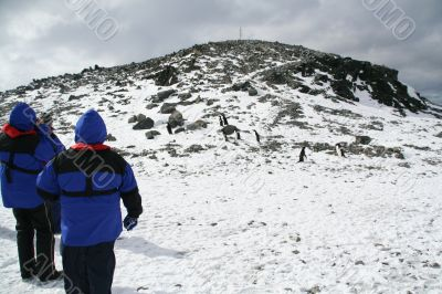Blue parka tourists climbing a hill