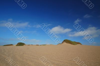 Sand Dune on the beach