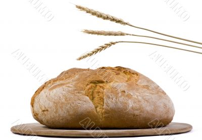 Bread Loaf with wheat isolated 2