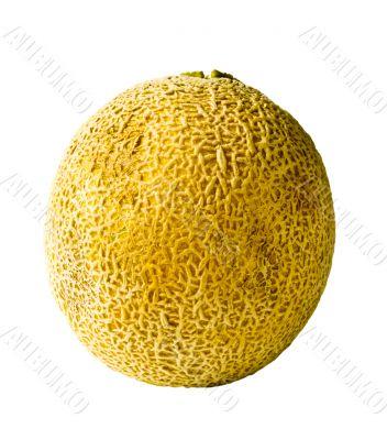 Isolated Whole Cantaloupe